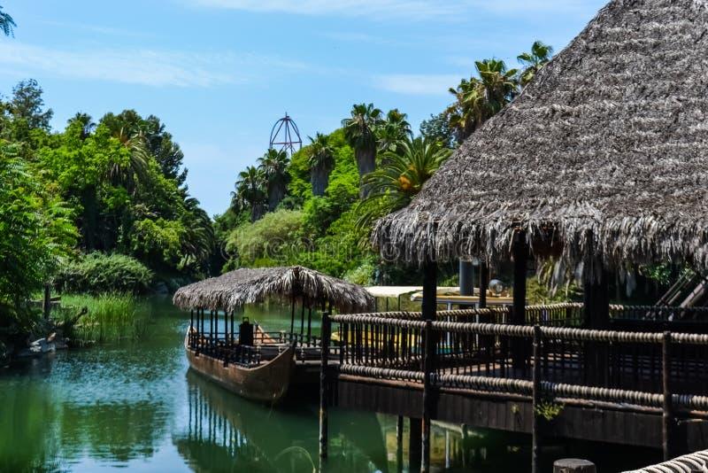 Een echte wildernis in een Pretpark, de varens van aardbomen van de rivier en boten stock afbeelding