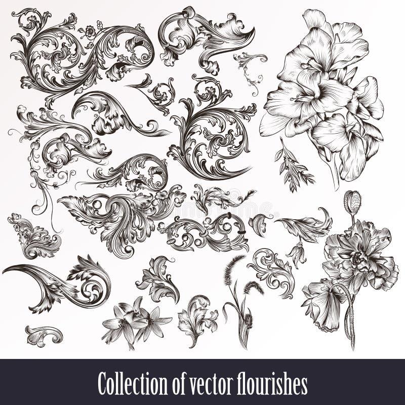Een een gestileerde inzameling of reeks van wijnoogst bloeien getrokken filigraan stock illustratie