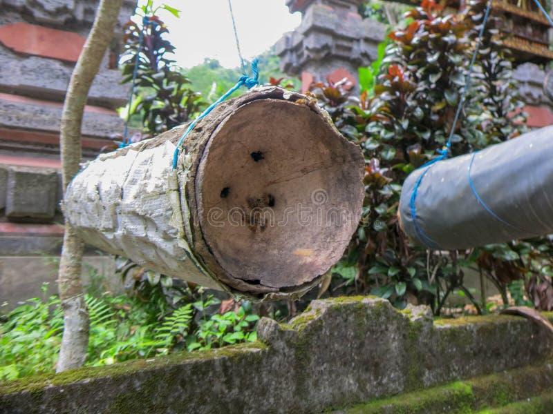 Een eenvoudige bijenbijenkorf maakte van bamboeboomstam Het hangen met kabel op boom Bakstenen muur die met tropisch mos en korst stock foto