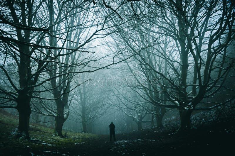 Een eenzaam cijfer die zich in een griezelige, mistige de winterweg van bomen in een weg door een bos bevinden stock afbeelding