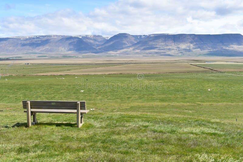 Een eenzame bank in aard in IJsland stock foto's