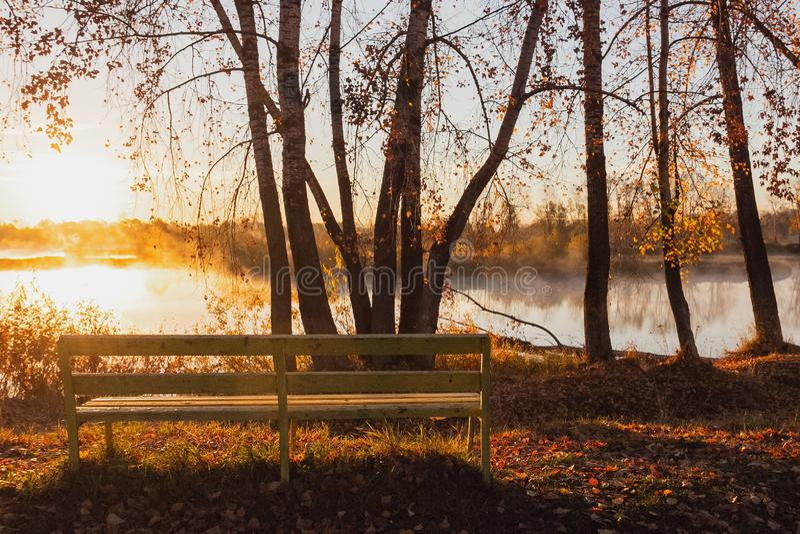 Een eenzame gele banktribunes dichtbij de rivier in de stralen van r royalty-vrije stock foto's