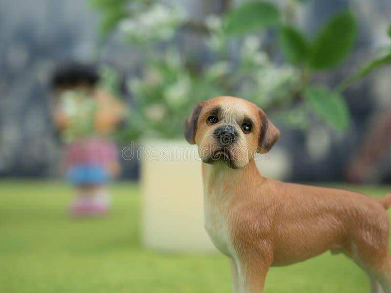 Een eenzame hond die zijn eigenaar zoeken stock afbeelding