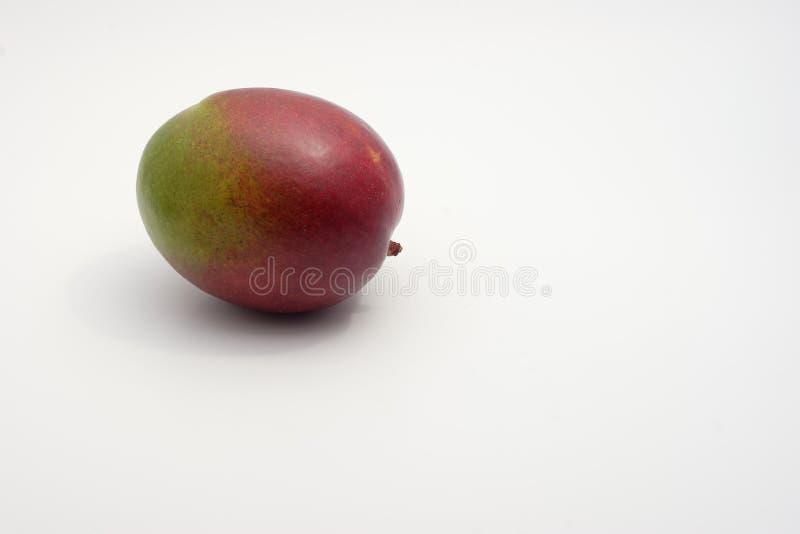 Een eenzame mango royalty-vrije stock fotografie
