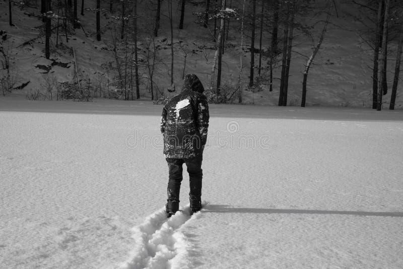 Een eenzame mens loopt in de sneeuw Dramatisch silhouet van een mens die in een sneeuwopheldering in het bos koud lopen stock foto