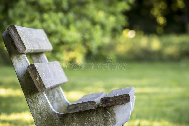 Een eenzame parkbank stock afbeeldingen