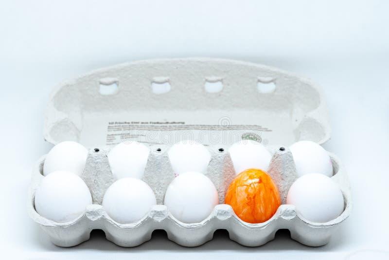 Een eidoos dat met witte kippeneieren en een oranje ei voor Pasen wordt gevuld royalty-vrije stock afbeeldingen