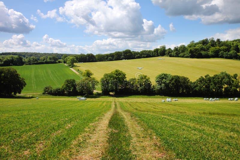 Een Engels Landelijk Landschap in de vroege Zomer stock afbeeldingen