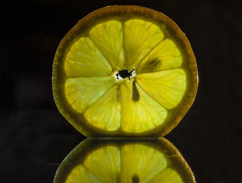 Een enkel citroen stock fotografie