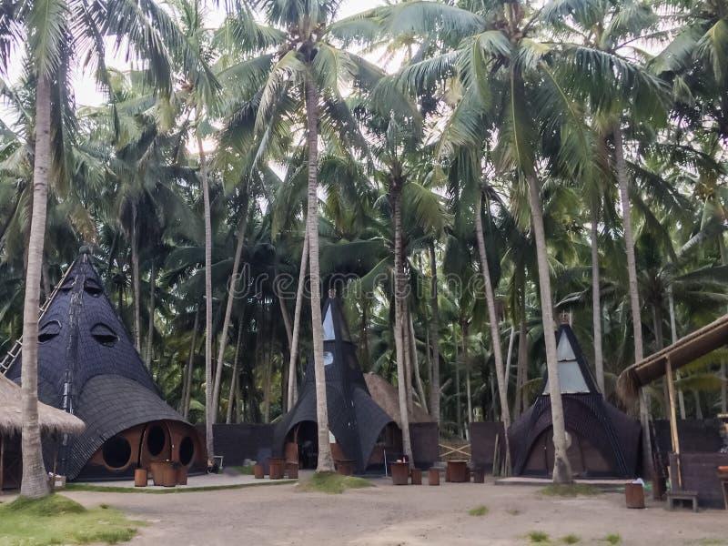 Een fascinerende mening van de huizen in palmen stock afbeelding