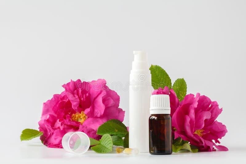 Een fles van natuurlijke wild nam olie toe en vers nam bloem - aromat toe stock fotografie