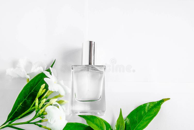 Een fles van witte parfum en bloemen met bladeren stock afbeelding
