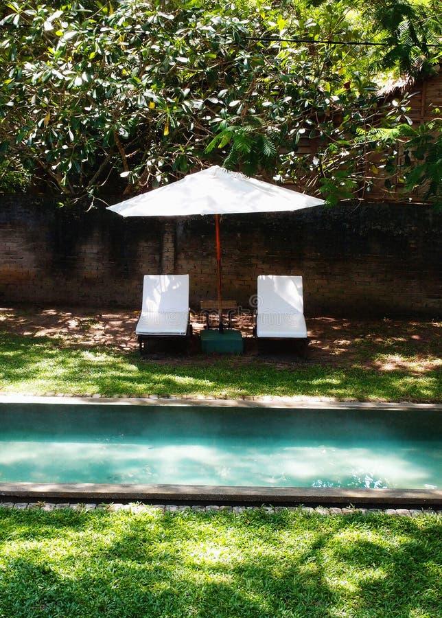 Zwembad in tropische tuin stock afbeelding