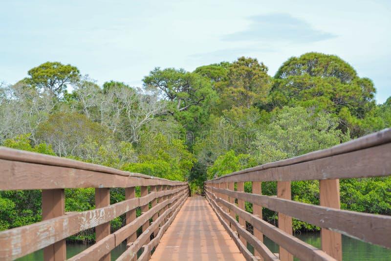 Een gang over het binnenwater bij McGough-Aardpark in Indisch Rotsenstrand, Florida stock foto's