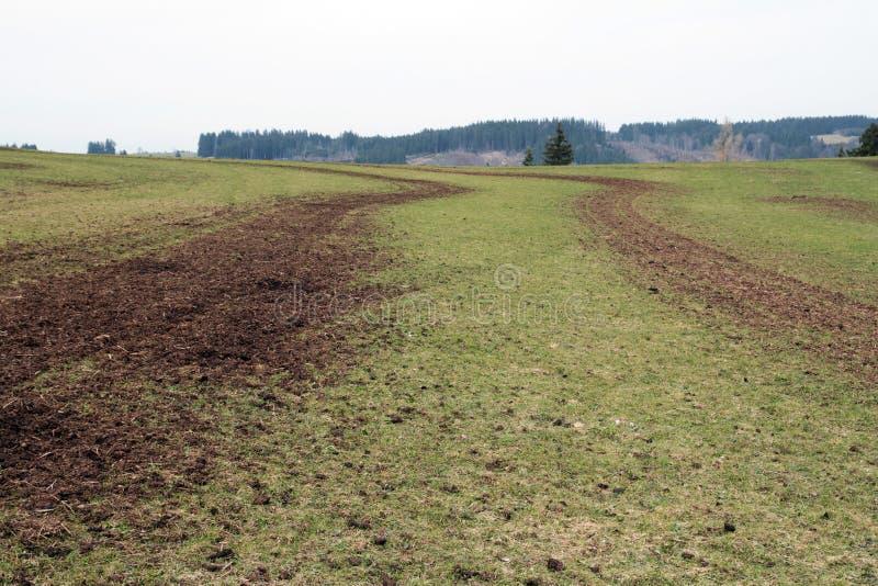 Een gebied met mest wordt bevrucht die stock foto