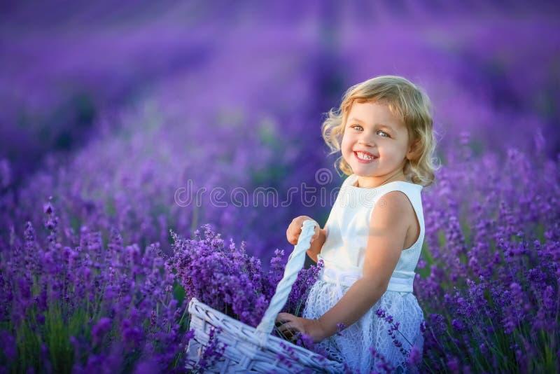 Een gelukkig meisje op een gebied die een mand met lavendel houden bloeit royalty-vrije stock afbeeldingen