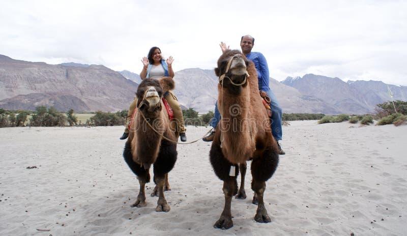 Een gelukkig toeristenpaar die op dubbel berijden humped Bactrische kamelen royalty-vrije stock afbeelding