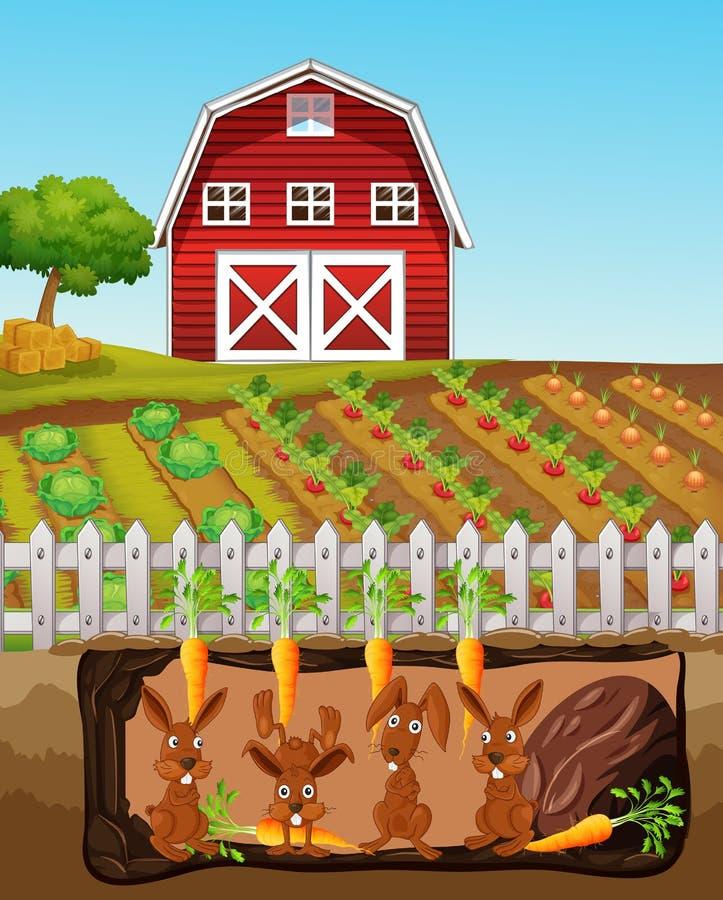 Een Gelukkige Konijnfamilie bij Landbouwbedrijf stock illustratie