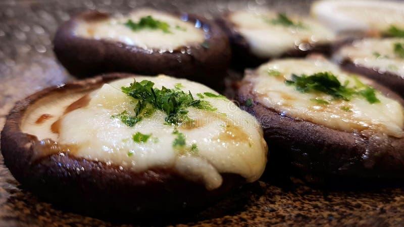 Een gemakkelijk gezond snackrecept, kaas-Gevulde Shiitake schiet als paddestoelen uit de grond royalty-vrije stock afbeeldingen