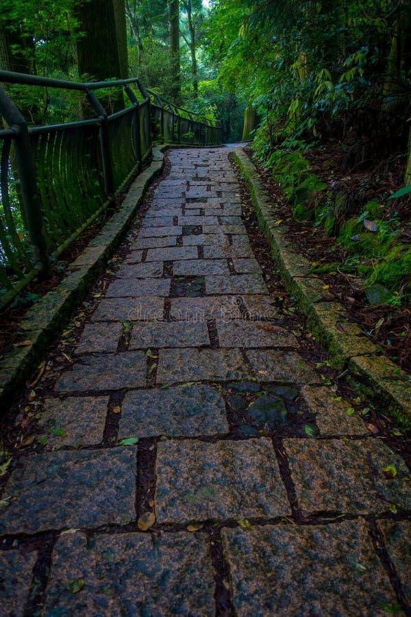 Een gestenigde ingang van Hakone-heiligdom, in het bos in Japan stock foto's