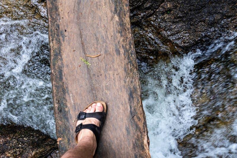 Een gevaarlijke brug van houten raad op een rivier in tropisch bos royalty-vrije stock foto's