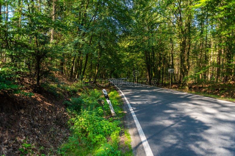 Een gevaarlijke landweg in een bos die van rendier enkel zo in Duitsland storten royalty-vrije stock foto
