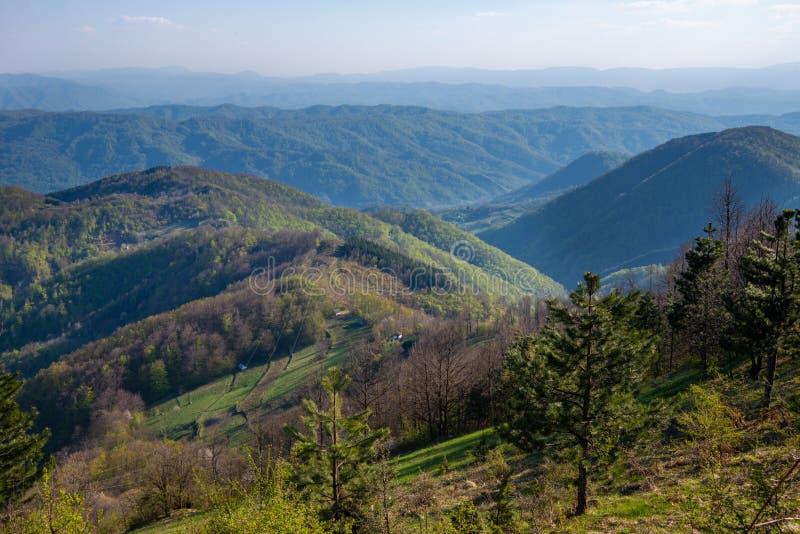 Een gezichtspunt op de berg Jagodnja in Servi? Een mooie mening van Drina River en de aard in westelijk Servi? stock fotografie