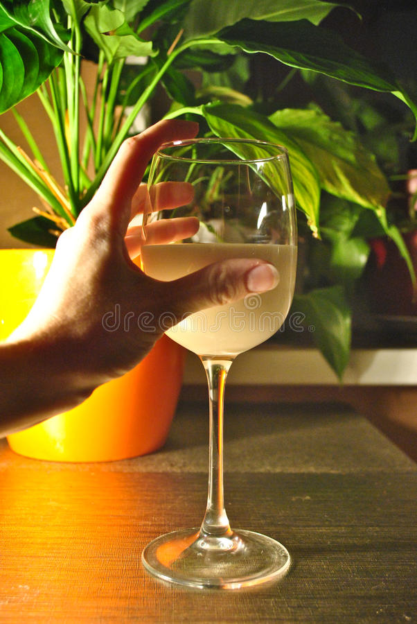 Een glas melk op een lijst in het avond licht royalty-vrije stock afbeeldingen
