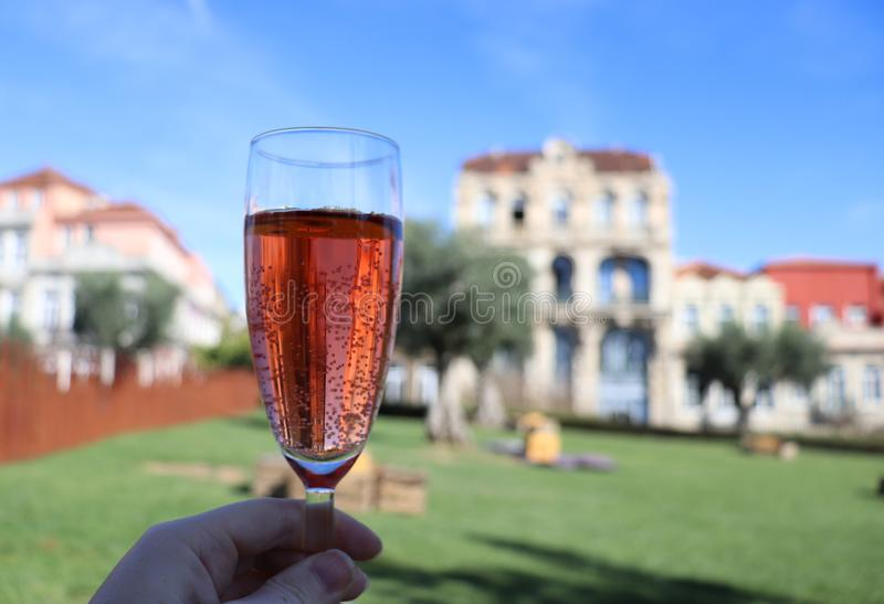 Een glas roséwijn in een park stock afbeeldingen