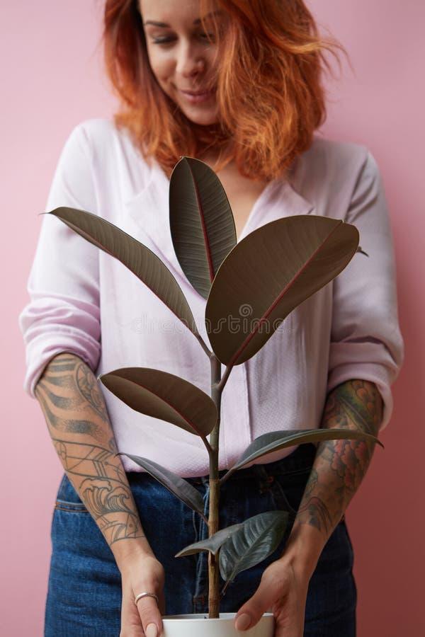 Een glimlachend meisje met een tatoegering houdt een pot met een ficusbloem rond een roze achtergrond met exemplaarruimte De gift royalty-vrije stock foto's