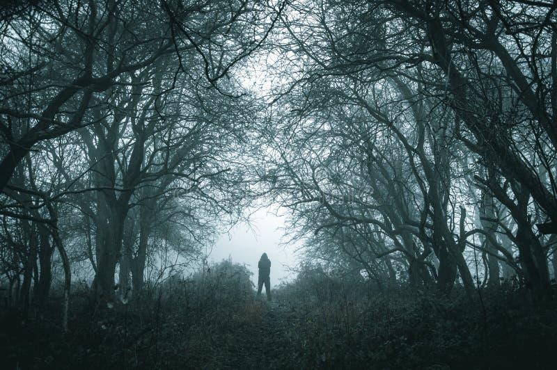 Een griezelig eenzaam cijfer met een kap aangaande een weg in een mistig bos in de winter met gedempt donker geeft uit stock foto's