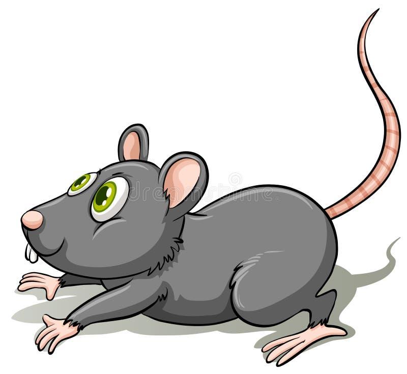 Een grijze rat vector illustratie