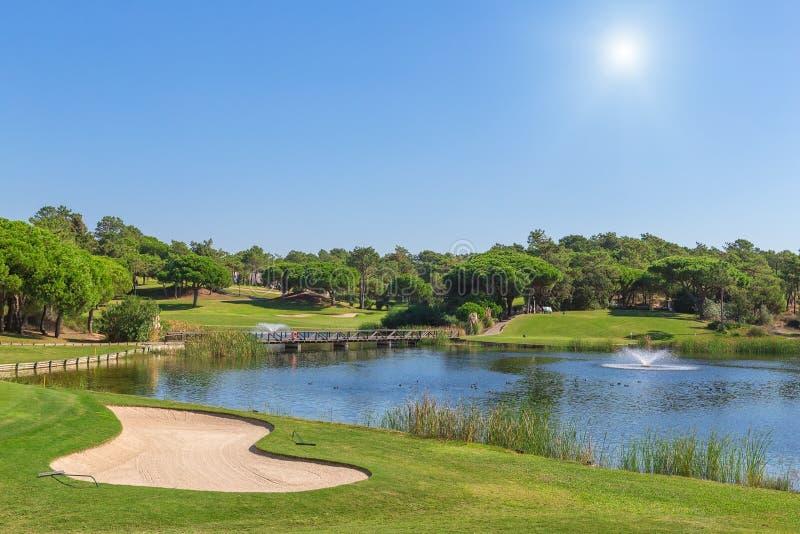 Een groen gazon aan het meer, golfcursus. royalty-vrije stock afbeelding