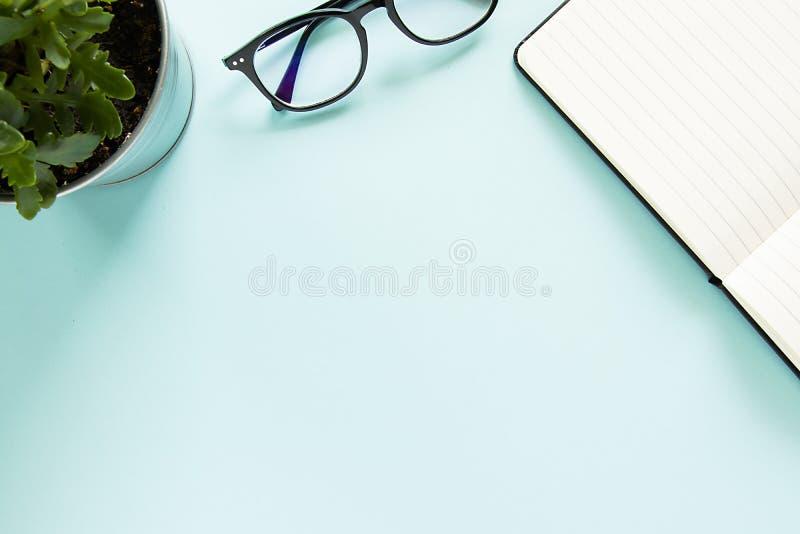 Een groene bloem, glazen, een open nota met witte pagina op een pastelkleur blauwe achtergrond De ruimte van het exemplaar royalty-vrije stock fotografie