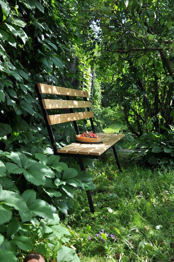 In een groene tuin in de aardvlaai met aardbeien en andere bessen royalty-vrije stock afbeelding