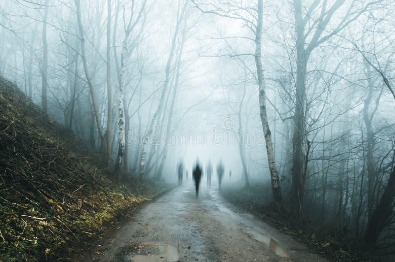 Een groep angstaanjagende spookachtige cijfers die uit de mist op een griezelige bosweg in de winter te voorschijn komen Met een  stock afbeelding
