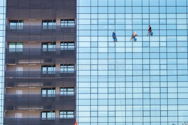 Een groep industriële alpinisten cleanig vensters op een modern wolkenkrabbergebouw stock afbeeldingen