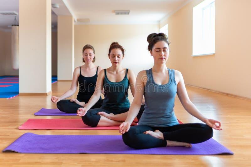 Een groep jonge mooie vrouwen die yoga in het klaslokaal doen Het concept sporten, meditatie en yogapraktijk Asana van salie stock afbeeldingen