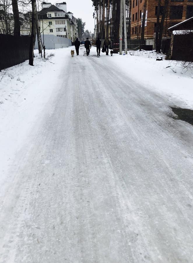 Een groep mensen & de honden lopen onderaan de bevroren straten van Irpen, de Oekraïne stock afbeelding