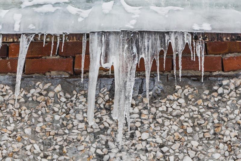 Een groep scherpe witte transparante ijskegels hangt neer van het grijze dak met ijs van een gebouw van rode bakstenen en wit royalty-vrije stock afbeelding