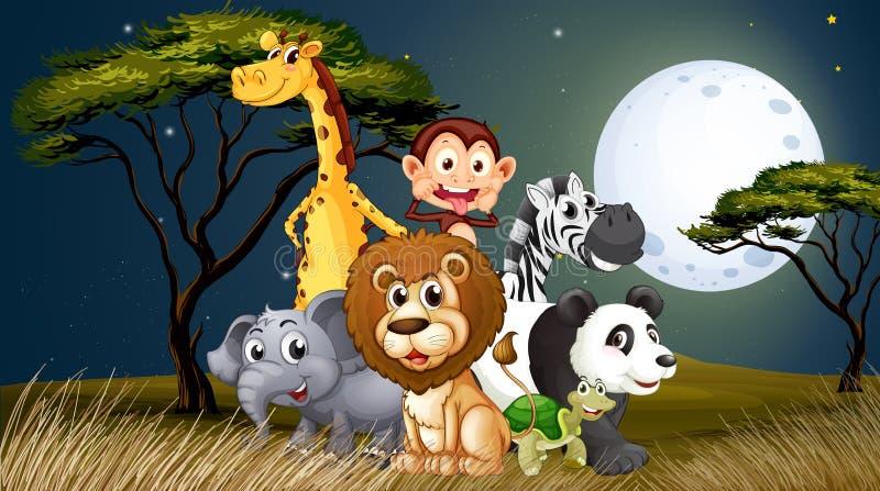 Een groep speelse dieren onder heldere fullmoon stock illustratie