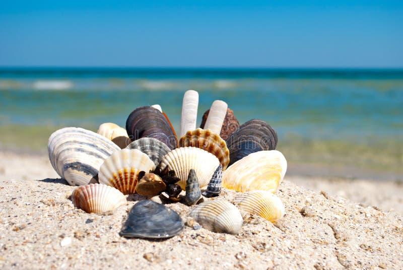 Een groep verschillende overzeese shells en stenen ligt op het zand tegen een blauwe overzees en een blauwe vakantie van de hemel royalty-vrije stock afbeeldingen