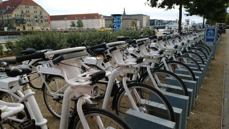 Een groot aantal fietsen voor huur in de straat van Kopenhagen royalty-vrije stock afbeelding