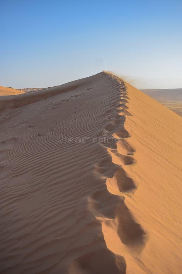 Een groot duin in het midden van de woestijn stock foto's