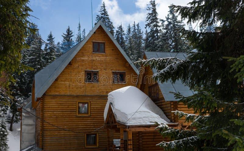 Een groot oud houten plattelandshuisje tussen snow-covered sparren stock fotografie