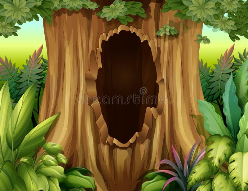Een grote boomstam van een boom met een gat vector illustratie