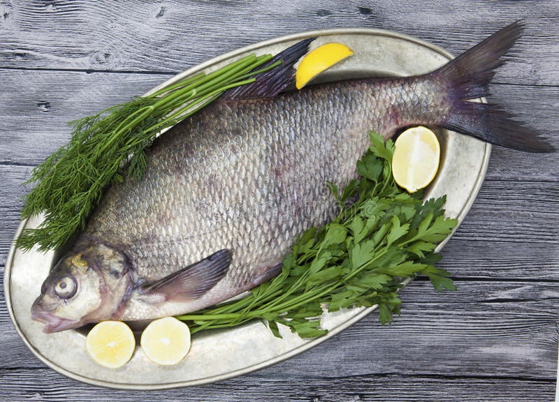 Een grote levende vis van de brasemrivier vist het liggen op a op een ijzerdienblad met een mes en plakken van citroen en met zou royalty-vrije stock afbeelding