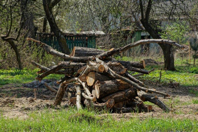 Een grote stapel van droog brandhout in een stapel in groen gras stock afbeelding