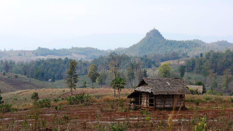 Een grote vallei in het midden van de vallei met zijn eigen vrijheid royalty-vrije stock afbeelding