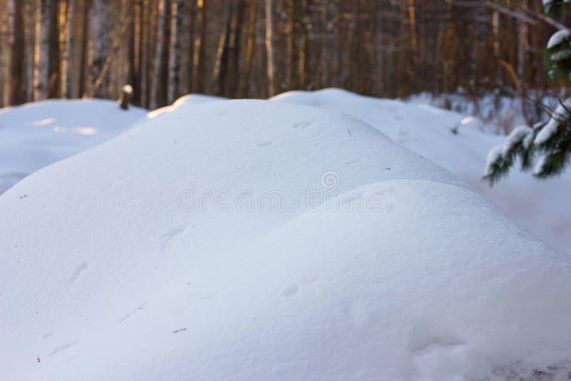 Een grote witte sneeuwbank met vogelsporen op de achtergrond van a stock foto